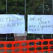 Riusciranno i nostri eroi a salvare gli alberi di Terrapieno? A Cagliari motoseghe di sinistra in azione!