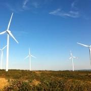 """""""Eolico, biomasse, fotovoltaico, metano: in Sardegna ci rubano la terra e la chiamano sostenibilità"""": un intervento di Nicolò Migheli"""