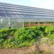 """""""L'eredità di Cappellacci? La speculazione delle rinnovabili e la farsa delle serre fotovoltaiche"""", un intervento di Antonello Gregorini"""