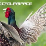 Cagliari capitale dello sciollorio! Mercoledì 30 tutti al Pride di Buongiorno Cagliari (e festeggiamo anche il Presidio di piazzale Trento)