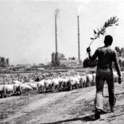Troppo storytelling e poca storiografia: la crisi della Sardegna è anche questa